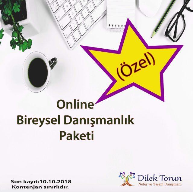 Dilek Torun online bireysel seasn