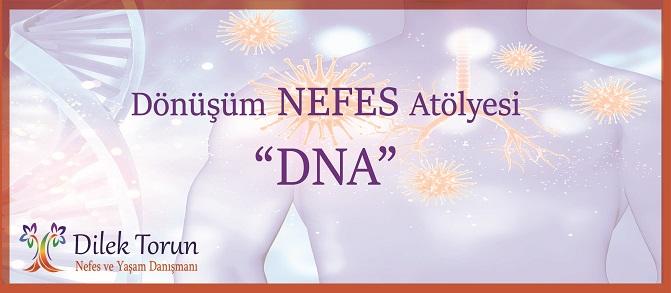 dilek torun DNA dönüşüm nefes atölyesi